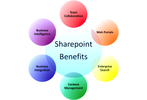 SharePoint-Consultant